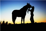 Sunset Cowgirl and Horse