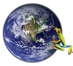 Earth Frog