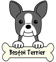 Personalized Boston Terrier