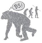 BS Evolution