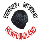 Newfoundland Gift