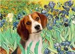 IRISES<br>& Beagle