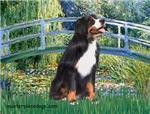 LILY POND BRIDGE<br>& Bernese Mountain Dog