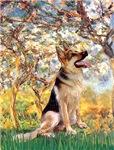 SPRING<br>& German Shepherd