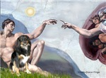 CREATION<br>& Australian Shepherd