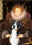 QUEEN ELIZABETH I<br>Greater Swiss Mountain Dog