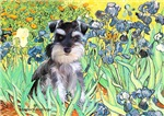 IRISES<br>Minaiture Schnauzer (nat ears)