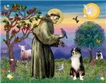 Saint Francis & Tri Color<br>Australian Shepherd (