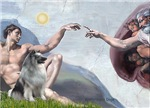 CREATION<br> & Keeshond