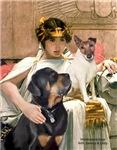 CLEOPATRA<br>Fox Terrier + Rottie Mix