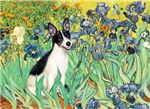 IRISES<br>& Rat Terrier