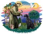 St. Francis #2 &<br>Giant Schnauzer