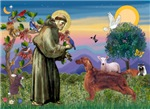Saint Francis / Irish Setter