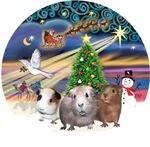 Christmas Magic<br>& Three Guinea Pigs