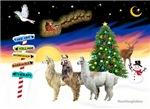 Christmas Signs & 3 Llamas