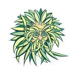 California Green Man 8917