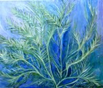 Aquatic Fern