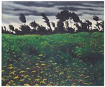 The Flourishing Field