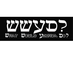 Messianic License Plate Frames & Bumper Stickers
