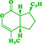 Catnip Nepetalactone Molecular Chemical Formula