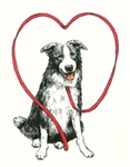 Love Your Border Collie