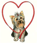 Love Your Yorkie