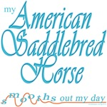My American Saddlebred Horse Smooths Out My Day