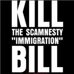 Kill the Scamnesty Bill!