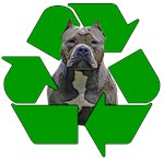 Recycle Adopt a Pet Dog
