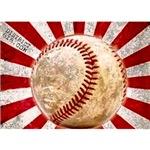 BASEBALL FOR JAPAN