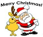 Christmas Holiday Section