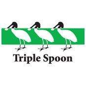 Triple Spoon