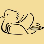 Stylized Mandarin Duck
