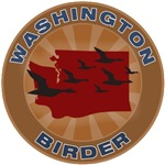 Washington Birder