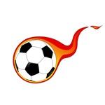 World Cup 2014 teams