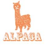 Alpaca1: Orange