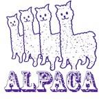 Alpaca4: Purple Line