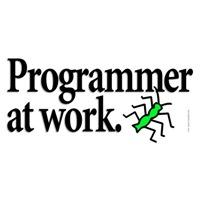 Programmer at Work