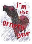 I'm the Ornery One - Pony