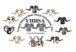 All Rams Logo