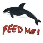 Orca Whale - Feed Me