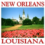 New Orleans - Photo Design
