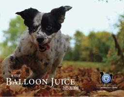 The Pets of Balloon Juice 2015 calendar