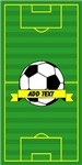 Soccer Pitch Customize