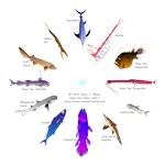 Deep Sea Fishes Clock s 1