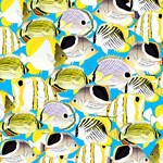 Butterflyfish Pattern