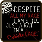 I Am Still Just A Rat In A Cubicle