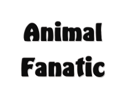 Animal Fanatic