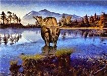Mt Shuksan Moose