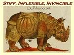 Stiff, Inflexible, Invincible Rhino Brown